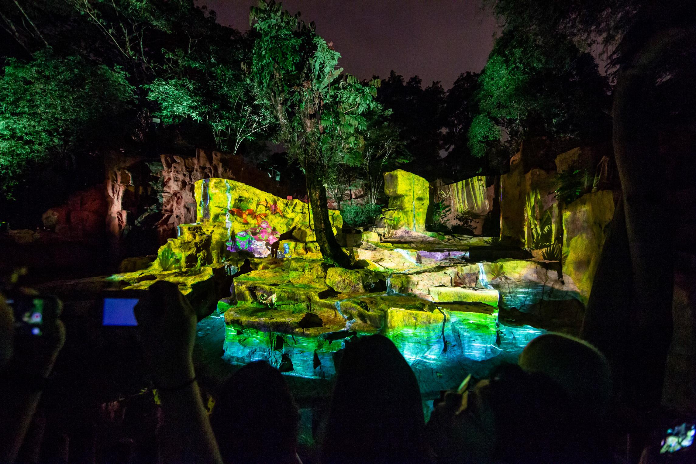 rainforest lumina  a multimedia night walk on the wild